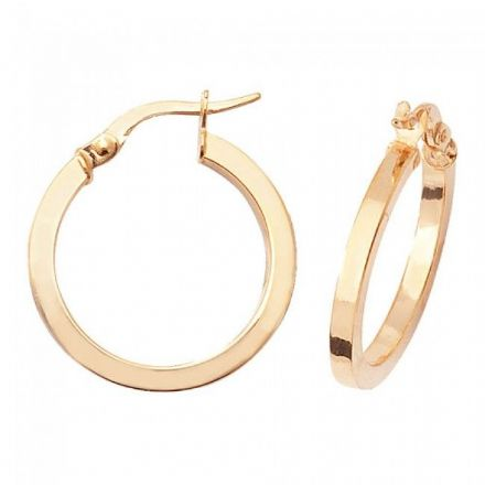 Just Gold Earrings -9Ct Earrings, ER869